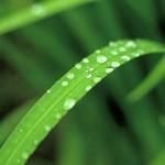 梅雨時期の体調 チェック! と対策