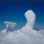 コラム 雪仕事