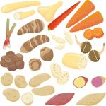 カラダの弱りは腎から 温めてくれる食品